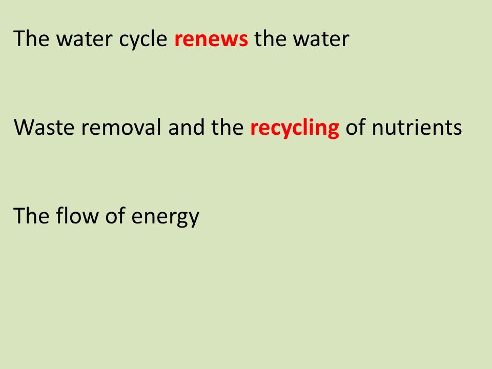 The water cycle renews the water Waste removal and the recycling of nutrients The flow of energy