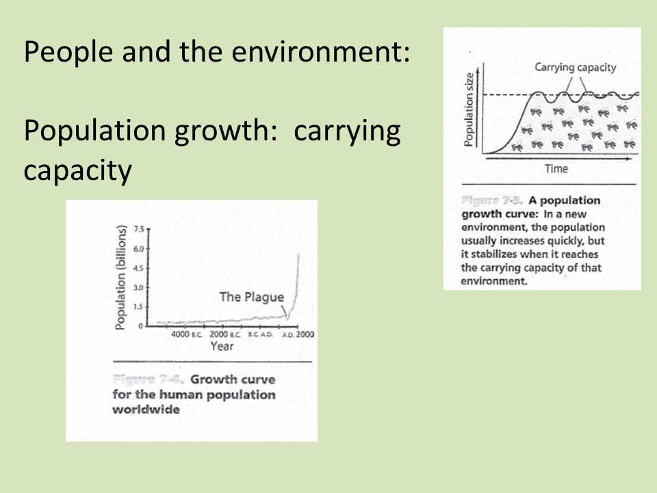 People and the environment: Population growth: carrying capacity