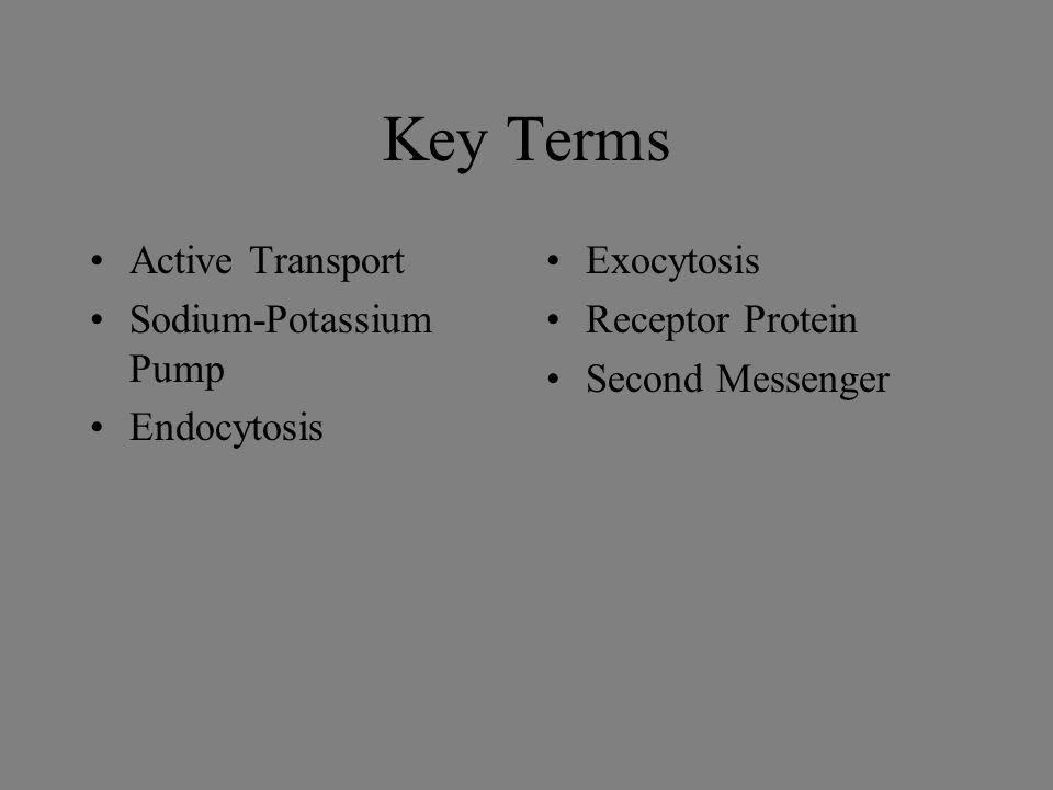 Key Terms Active Transport Sodium-Potassium Pump Endocytosis Exocytosis Receptor Protein Second Messenger
