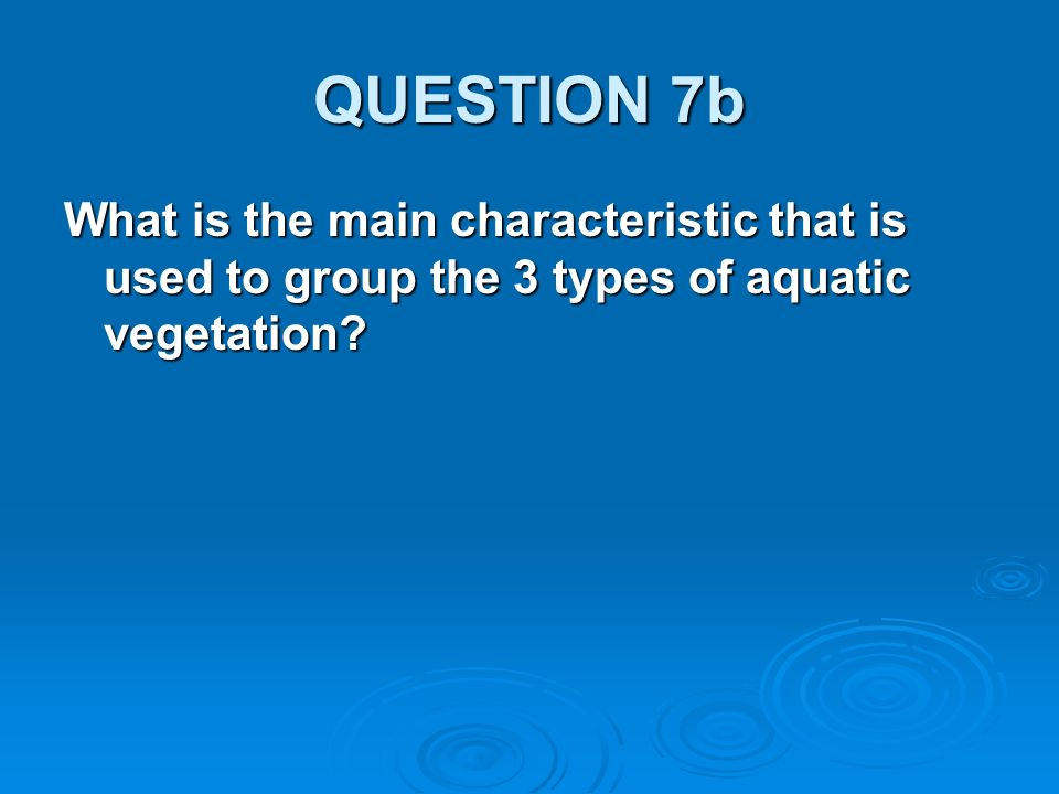 QUESTION 7b What is the main characteristic that is used to group the 3 types of aquatic vegetation