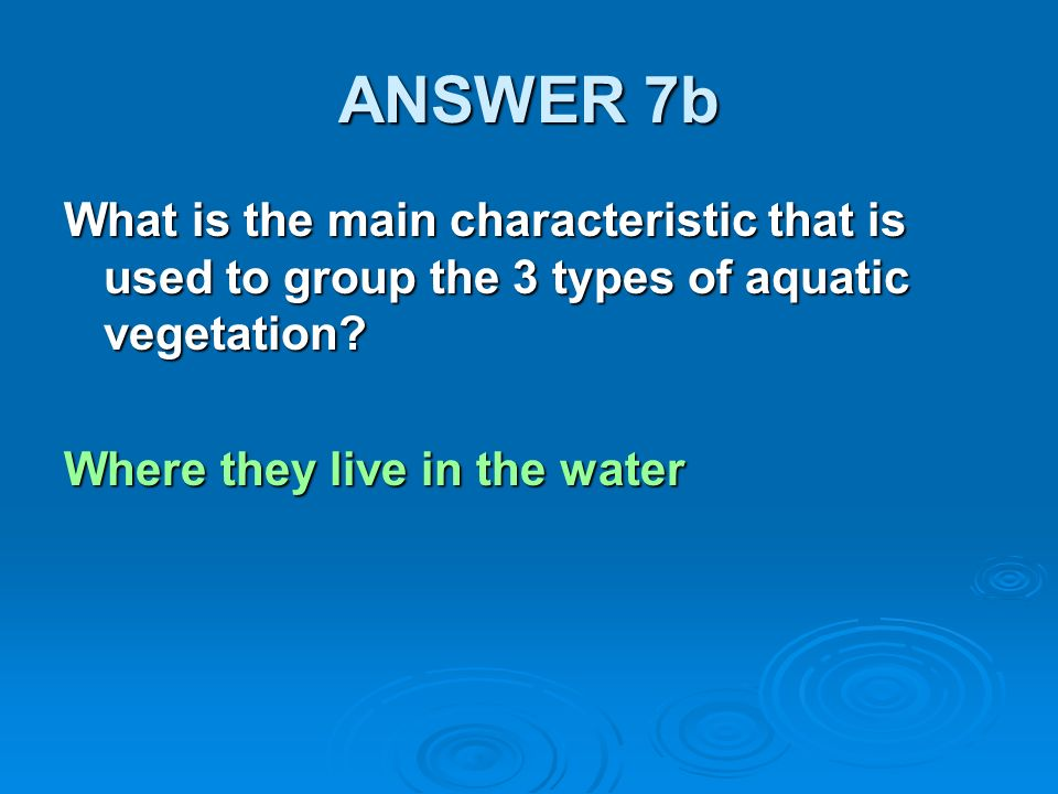 ANSWER 7b What is the main characteristic that is used to group the 3 types of aquatic vegetation.