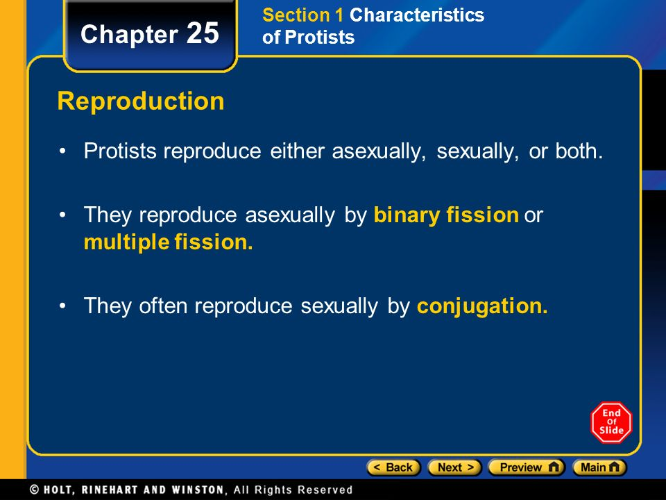 What triggers when protists reproduce sexually