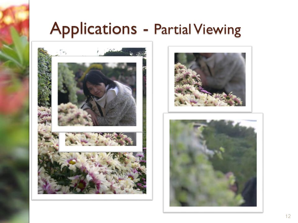 Applications - Partial Viewing 12