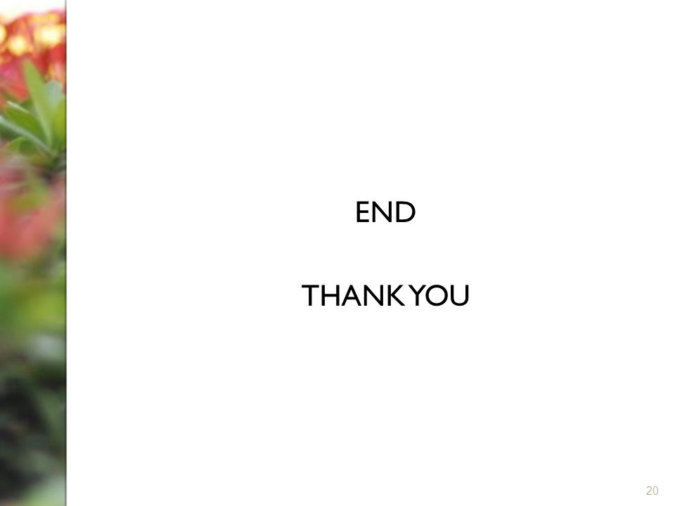 END THANK YOU 20