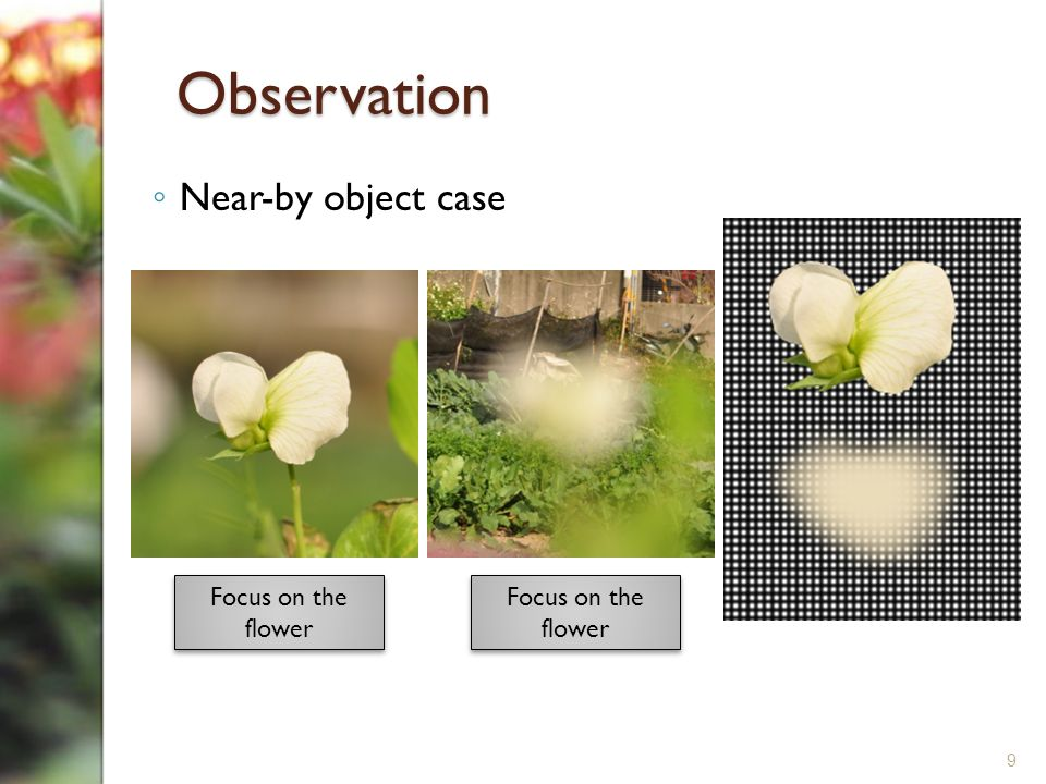 Observation ◦ Near-by object case 9 Focus on the flower