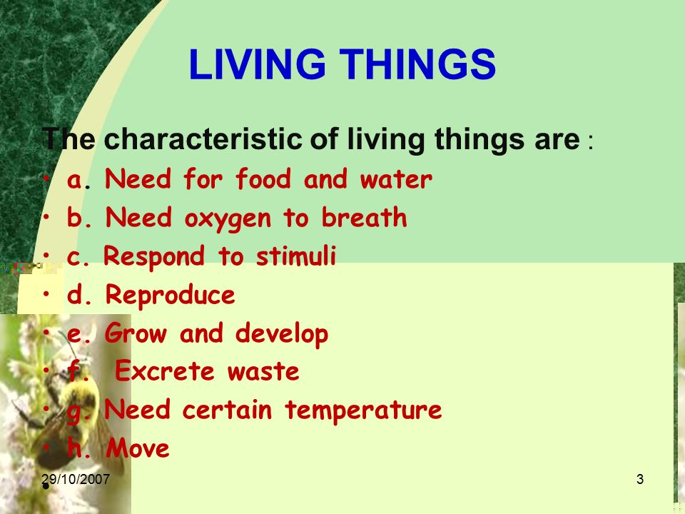 Living Things The Characteristic Of Living Things Are A