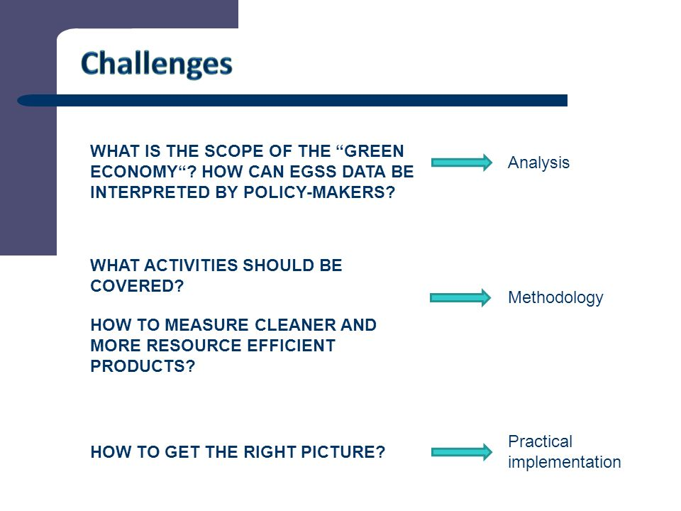8 WHAT IS THE SCOPE OF THE GREEN ECONOMY . HOW CAN EGSS DATA BE INTERPRETED BY POLICY-MAKERS.