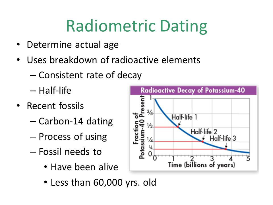 dating old fossils