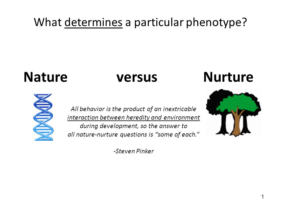 the relationship between heredity and the environment is