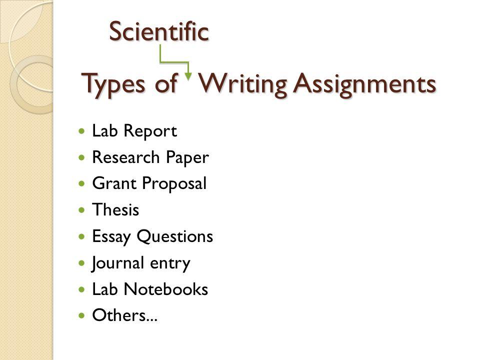 writing a good english essay organization