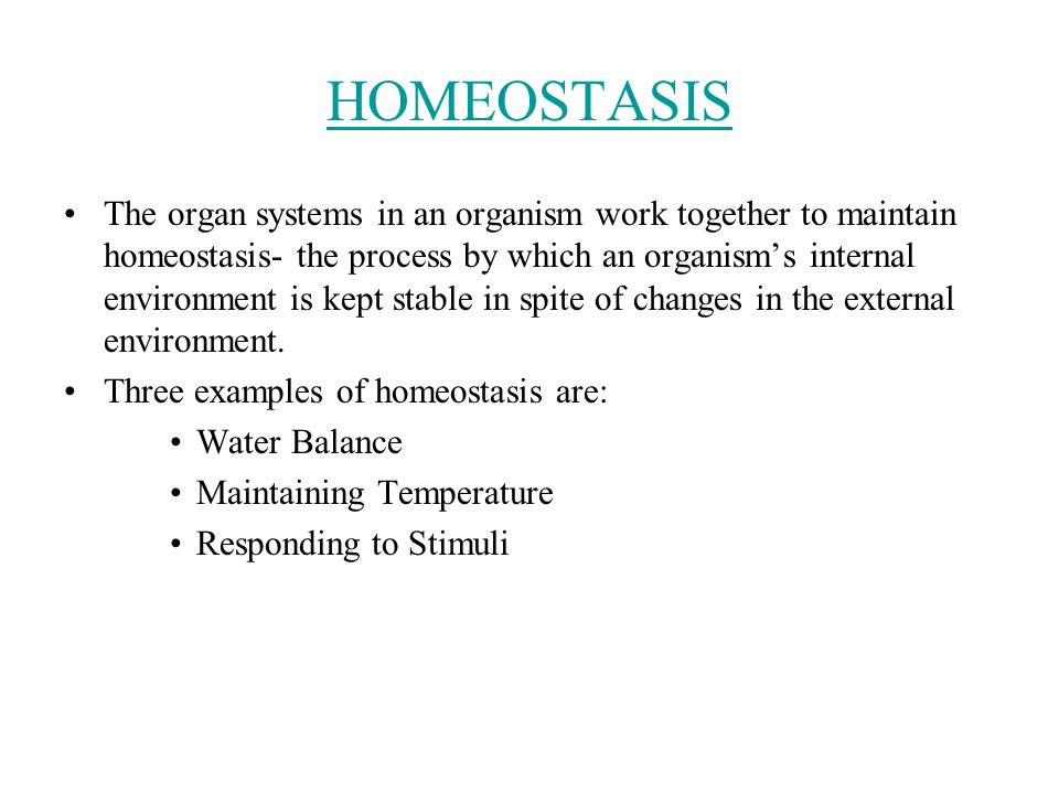 HOMEOSTASIS The organ systems in an organism work together to maintain homeostasis- the process by which an organism's internal environment is kept stable in spite of changes in the external environment.