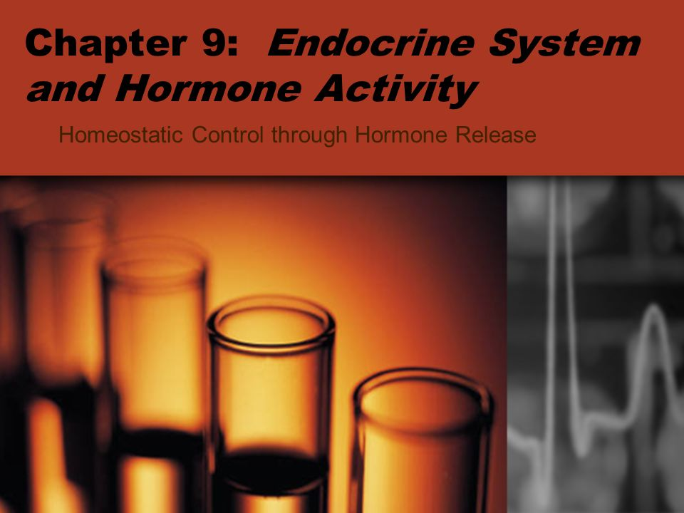 Chapter 9: Endocrine System and Hormone Activity Homeostatic Control through Hormone Release