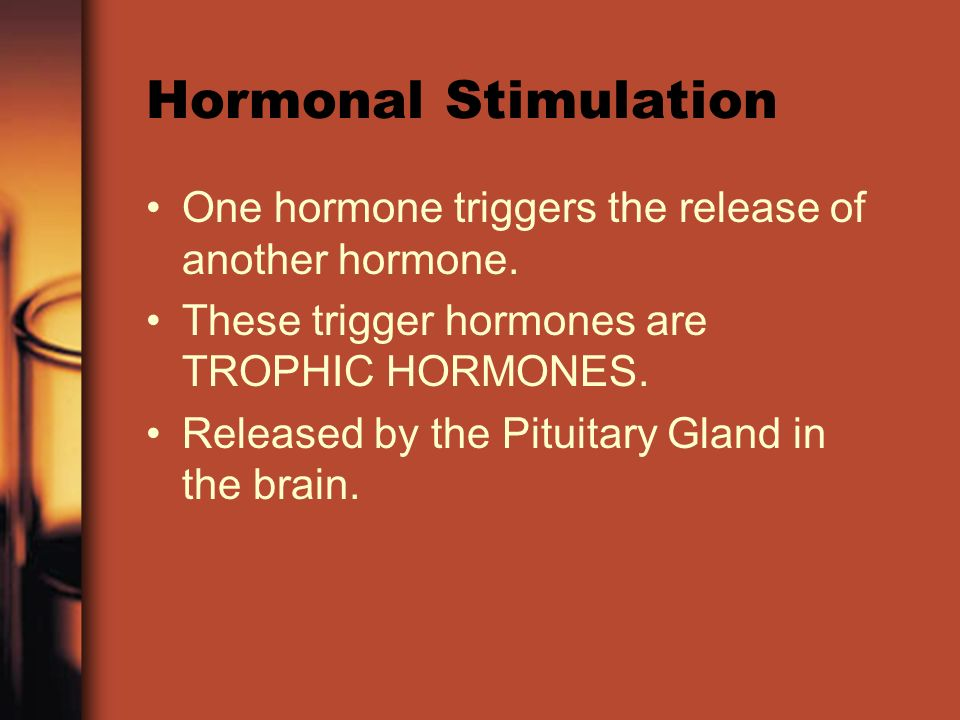 Hormonal Stimulation One hormone triggers the release of another hormone.