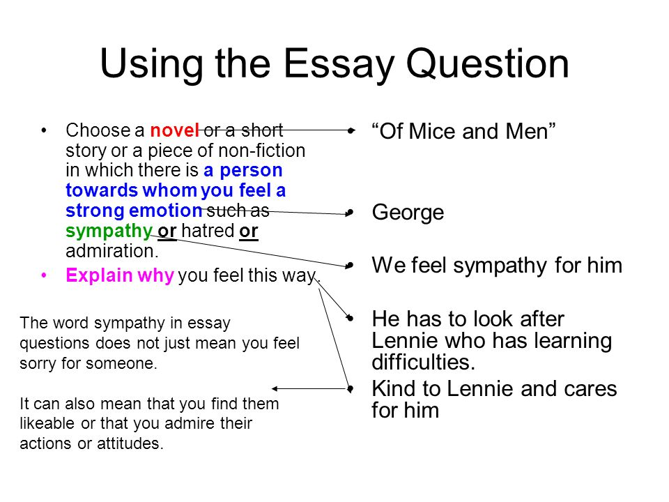 Secondary School English Essay Using The Essay Question Choose A Novel Or A Short Story Or A Piece Of Non Essay About Healthy Food also English Model Essays Of Mice And Men Mini Essay To Identify Key Words From The Essay  English Essays Examples