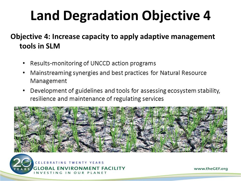 Land Degradation Objective 4 Objective 4: Increase capacity to apply adaptive management tools in SLM Results-monitoring of UNCCD action programs Mainstreaming synergies and best practices for Natural Resource Management Development of guidelines and tools for assessing ecosystem stability, resilience and maintenance of regulating services
