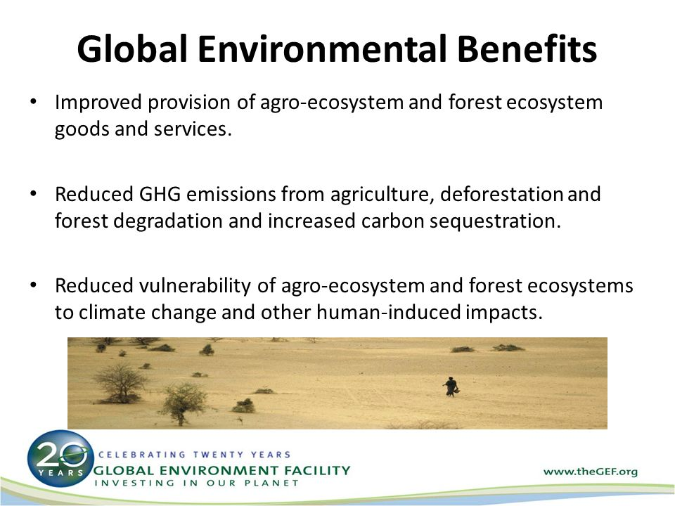Global Environmental Benefits Improved provision of agro-ecosystem and forest ecosystem goods and services.
