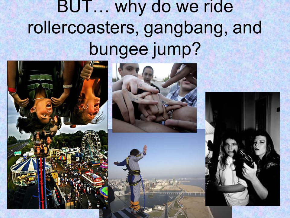 BUT… why do we ride rollercoasters, gangbang, and bungee jump