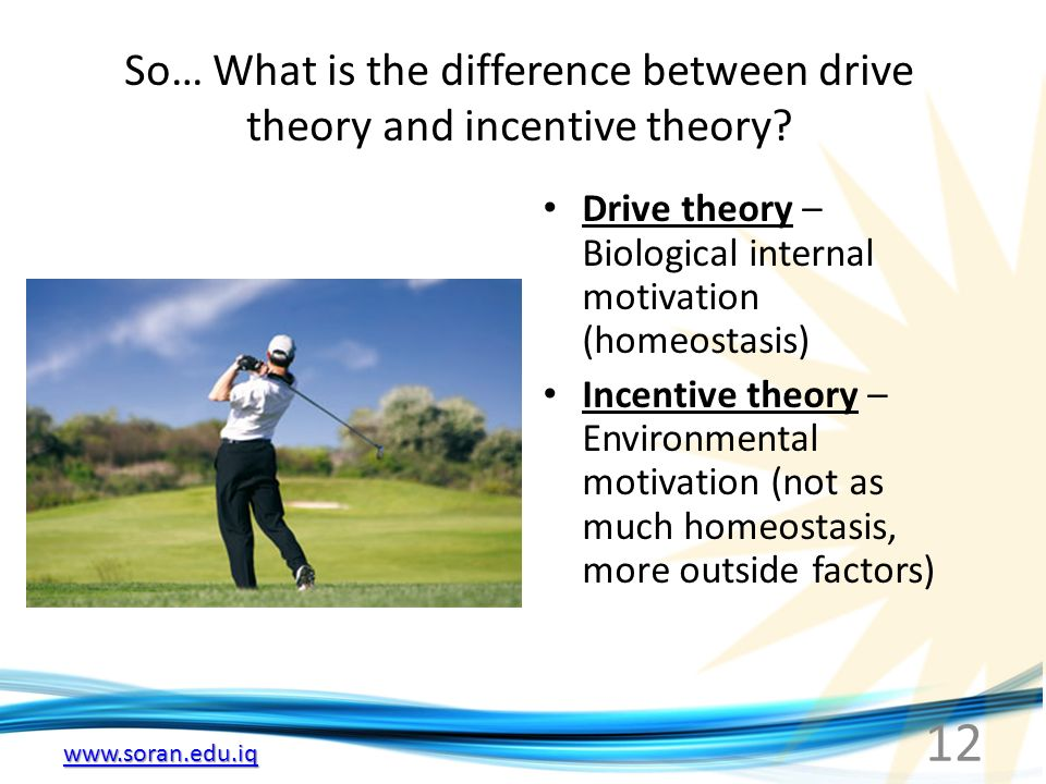 12 So… What is the difference between drive theory and incentive theory.