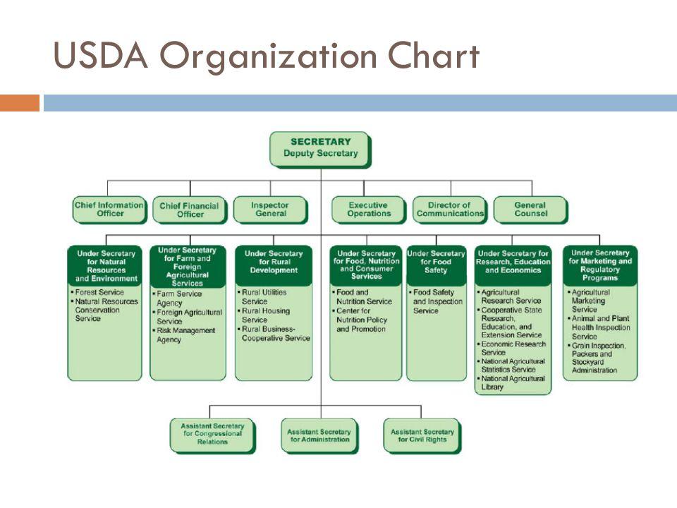 7 Usda Organization Chart