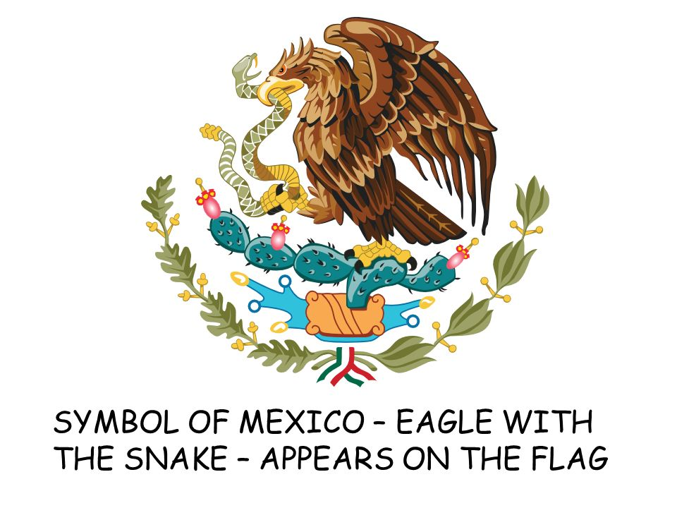 Mexico By Stacy Gjovik Symbol Of Mexico Eagle With The Snake