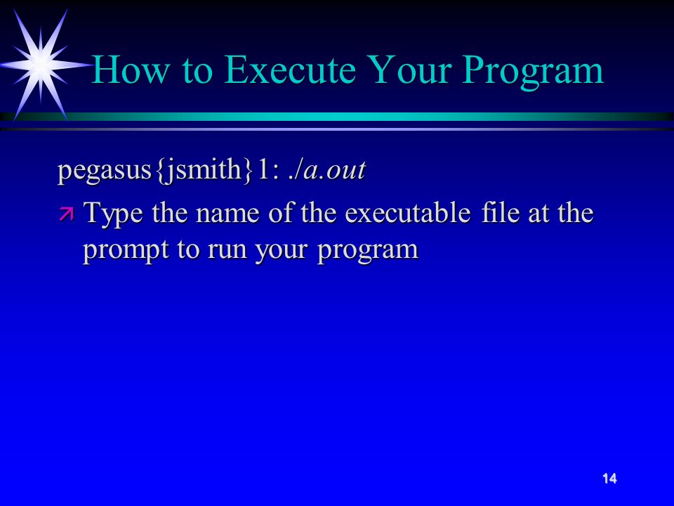 14 How to Execute Your Program pegasus{jsmith}1:./a.out ä Type the name of the executable file at the prompt to run your program