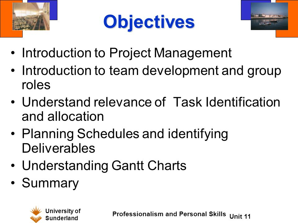 project management personality & skill types essay On the other hand, project management is a practice of applying knowledge, skills, tools and techniques to the project activities to achieve the project requirements effectively and efficiently (heagney, 2012 project management institute , 2008.