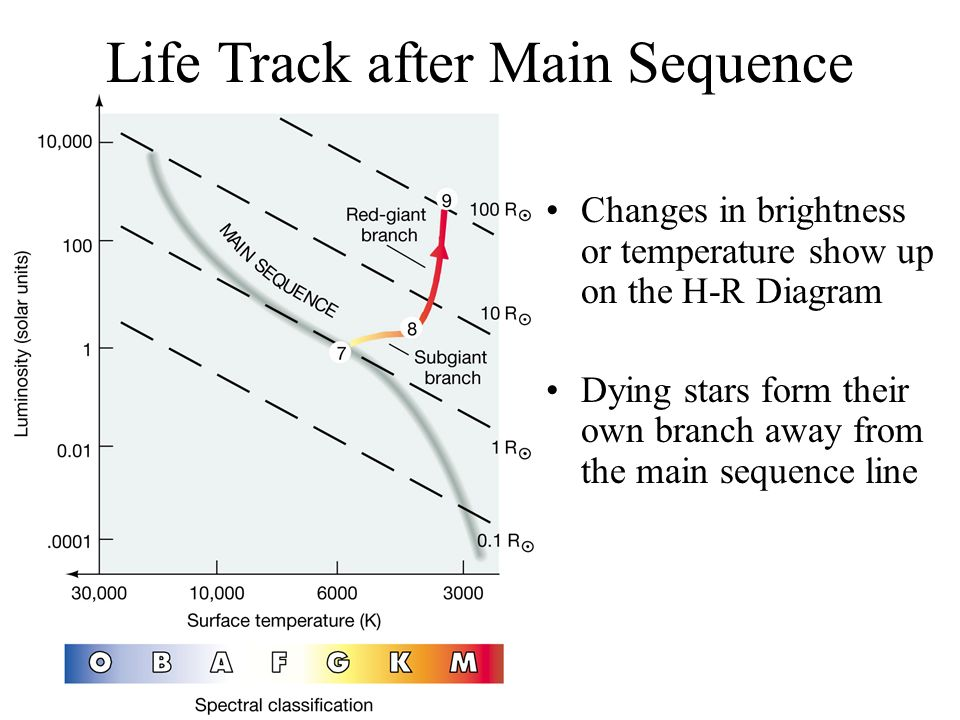 The life and death of stars what is a star a star is a sphere of 53 life track after main sequence changes in brightness or temperature show up on the h r diagram dying stars form their own branch away from the main ccuart Gallery