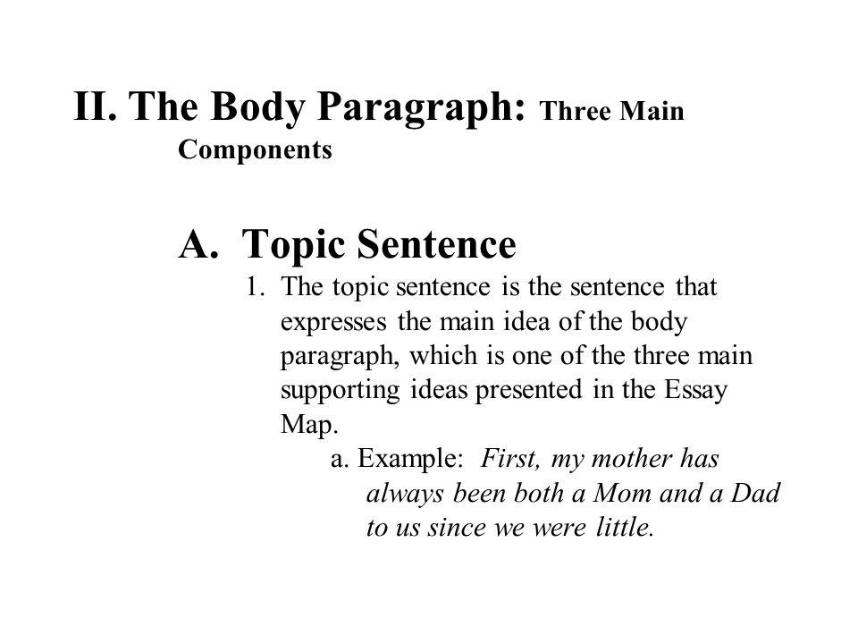 main idea essay examples