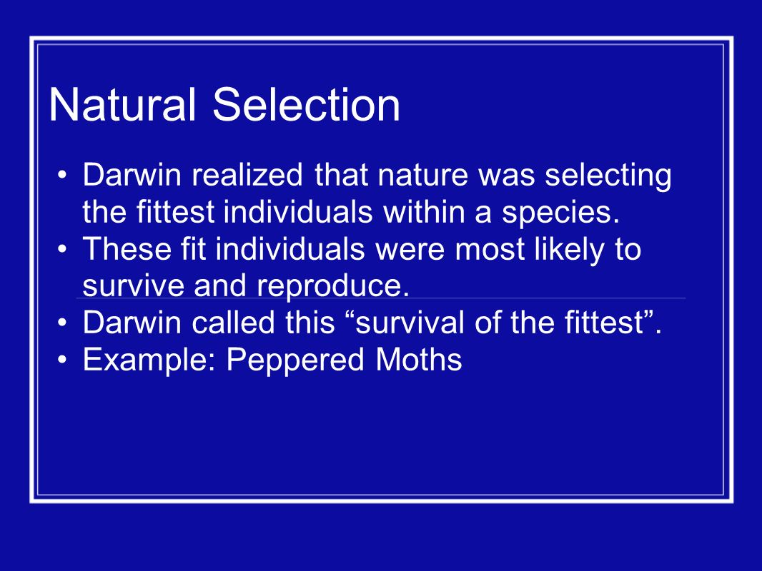 Natural Selection Darwin realized that nature was selecting the fittest individuals within a species.