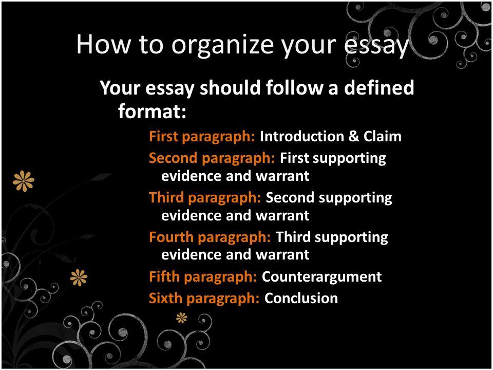 argumentative essay about language