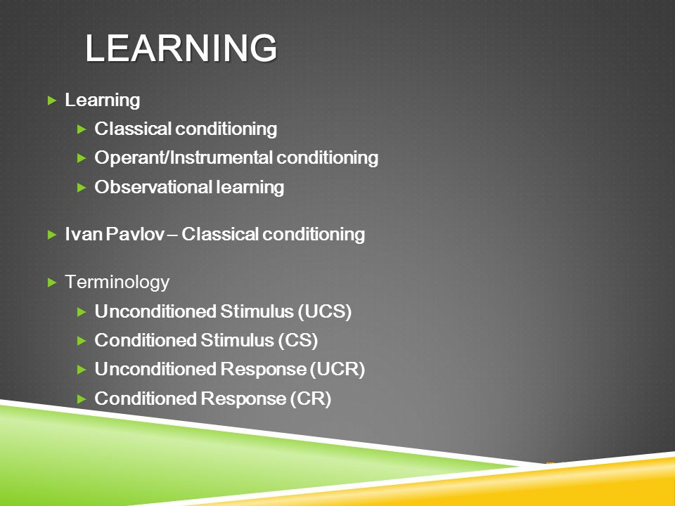 operant learning terms