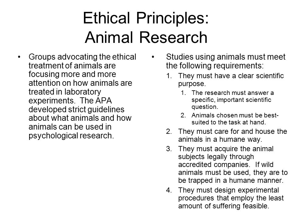ethical principle The fundamental ethics principles are the foundations of a professional accountant's career - professional accountants need to lead and must champion these fundamental ethical values.