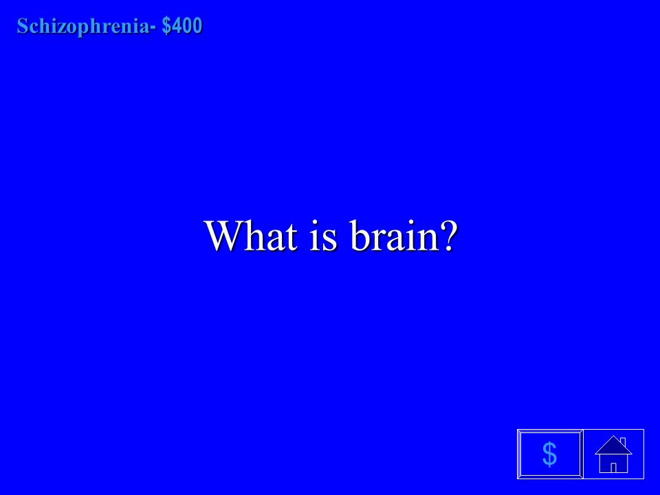 Schizophrenia - $300 What is paranoid $