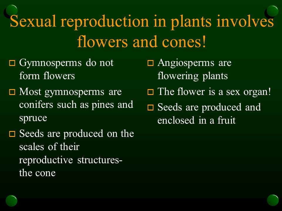 Sexual reproduction in plants involves flowers and cones.