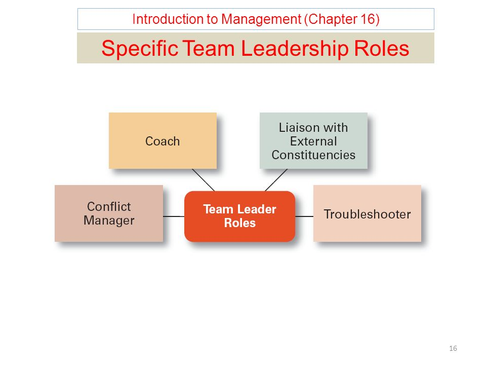 Introduction to Management (Chapter 16) 16 Specific Team Leadership Roles