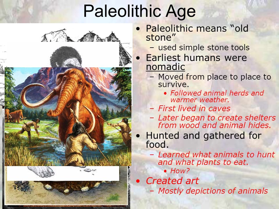 what tools were used in the neolithic age