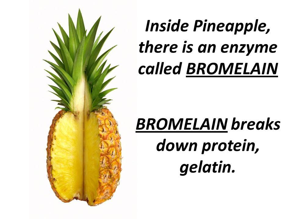 bromelain and gelatin