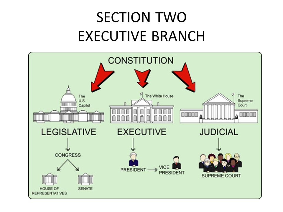 SECTION TWO EXECUTIVE BRANCH