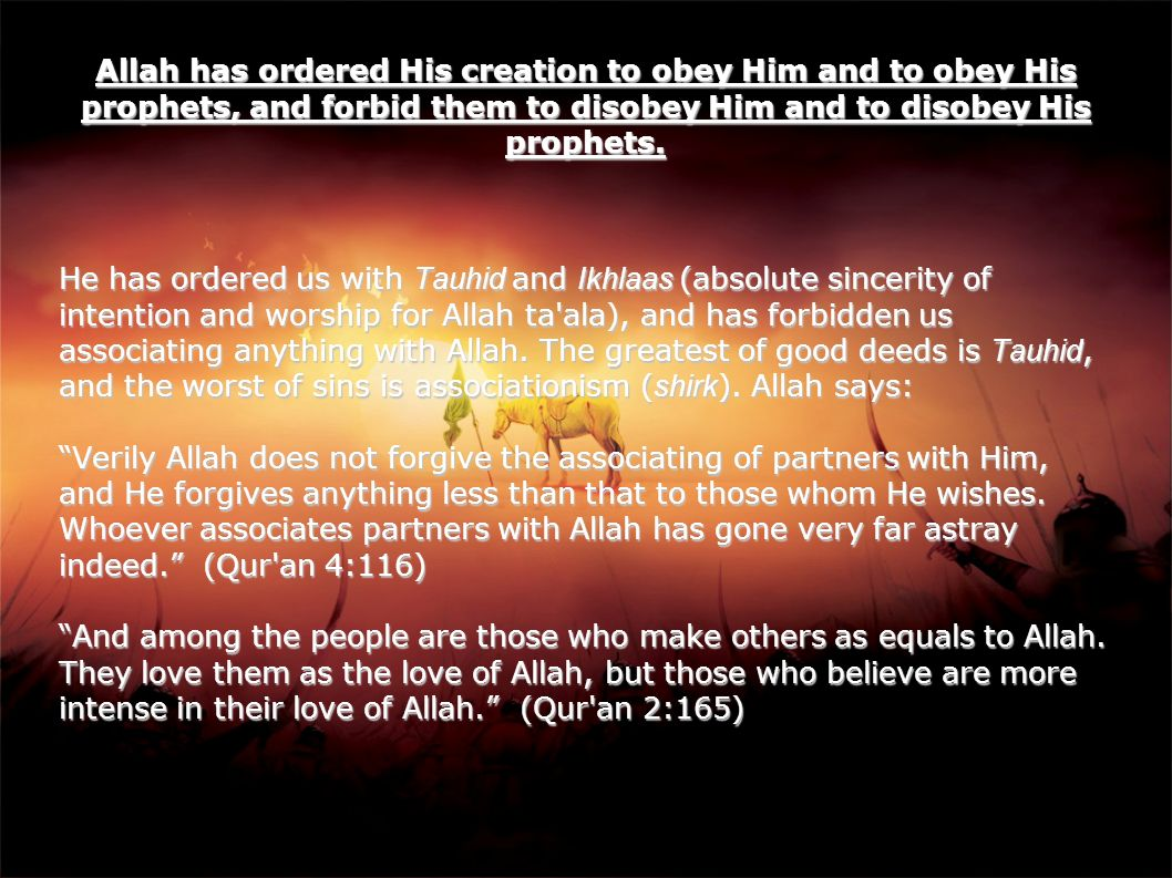 Who are the Allies of Allah The Allies are those who often repent