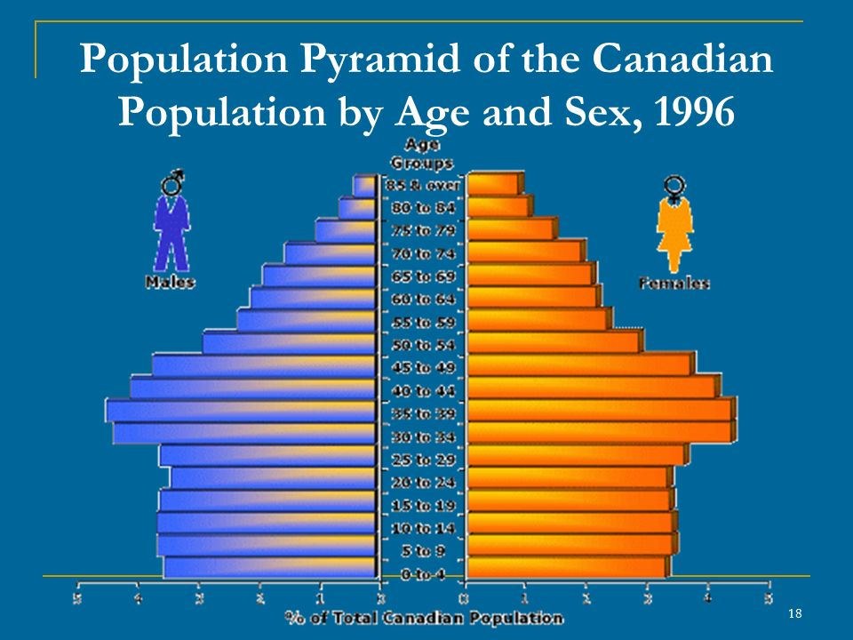18 Population Pyramid of the Canadian Population by Age and Sex, 1996
