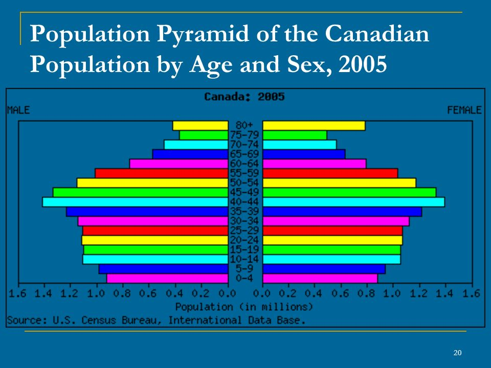 20 Population Pyramid of the Canadian Population by Age and Sex, 2005