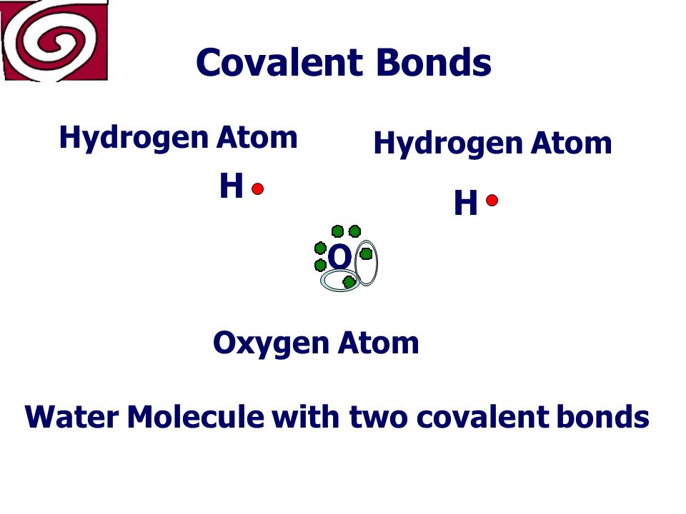 Covalent Bonds What is a covalent bond The chemical bond that forms when two atoms share electrons