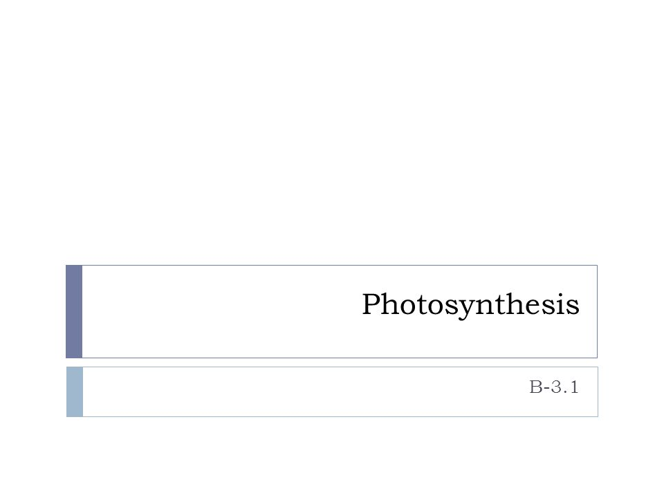 Photosynthesis B-3.1