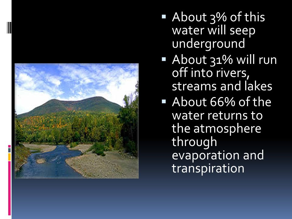  A hydrologist is particularly interested in stream flow -- the 31% of precipitation which runs off into rivers, streams and lakes.