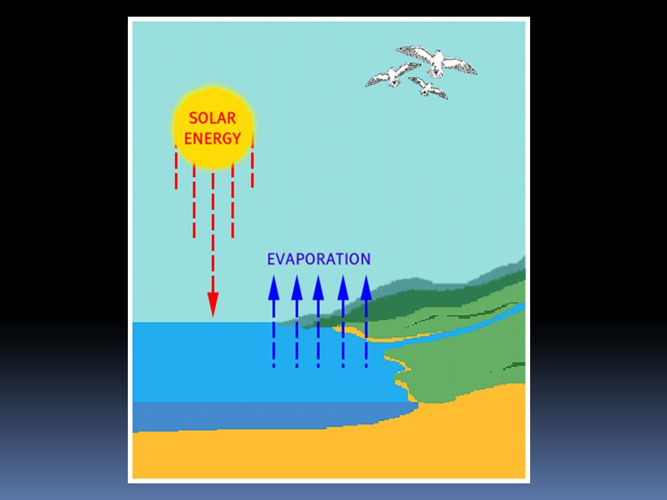Evaporation  Conversion of water from a liquid into a gas  Water transferred from surface to atmosphere through evaporation