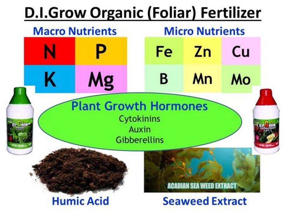 Success Stories D I Grow Organic Foliar Fertilizer  - ppt
