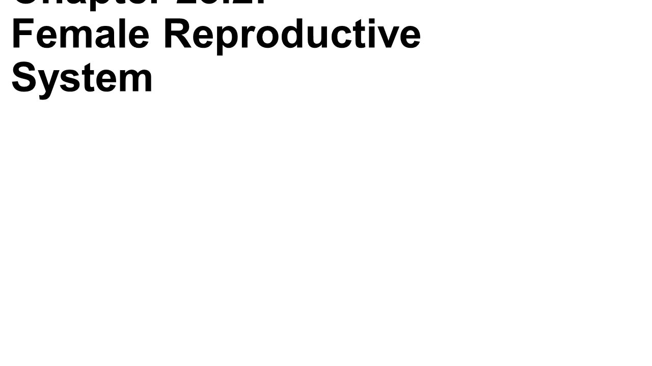 Chapter 23.2: Female Reproductive System. General Anatomy -Ovaries ...