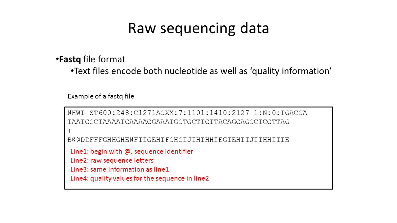 Raw sequencing data Fastq file format Text files encode both nucleotide as well as 'quality 1:N:0:TGACCA TAATCGCTAAAATCAAAACGAAATGCTGCTTCTTACAGCAGCCTCCTTAG 1:N:0:TGACCA GGTTGTCCACTCATAAGATGTGACCTGGCTCTTAGAGGAACTTTACAAAT F9FDBFH<DGIII Example of a fastq file Line1: begin sequence identifier Line2: raw sequence letters Line3: same information as line1 Line4: quality values for the sequence in line2