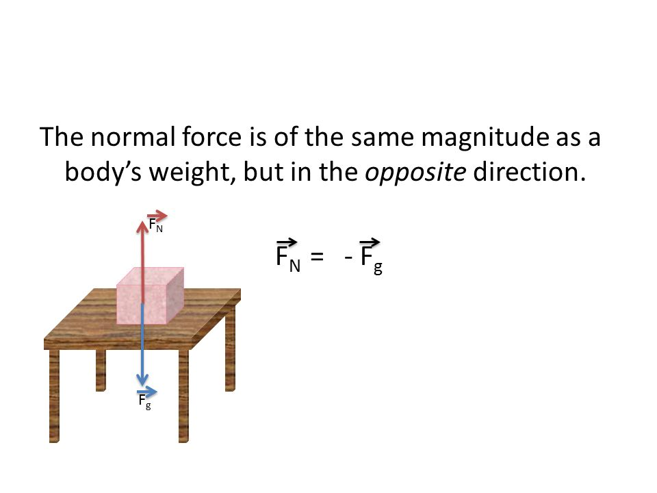 The normal force is of the same magnitude as a body's weight, but in the opposite direction.