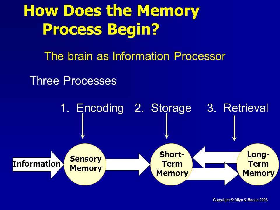 Copyright © Allyn & Bacon 2006 How Does the Memory Process Begin.